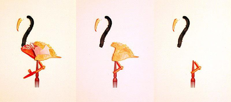 essence-of-a-flamingo-elza-zijlstra-edited-800x354